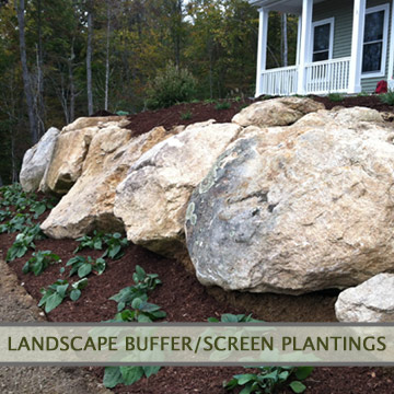 landscapebuffer