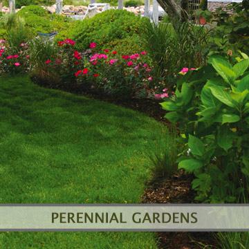 perennialgardens