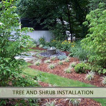 treeandshrubs